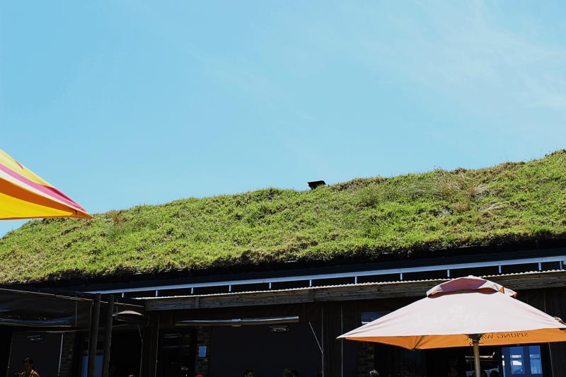 grass-roof-min